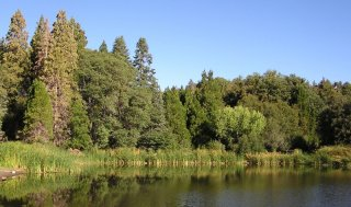 Doane pond info and map for Lake henshaw fishing report